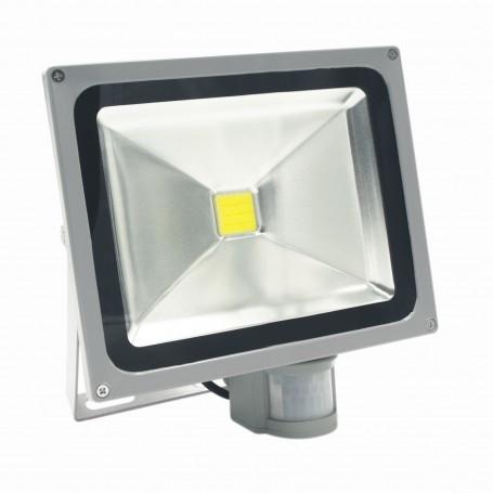 Faro LED 30W - Sensore Movimento e Crepuscolare - Premium